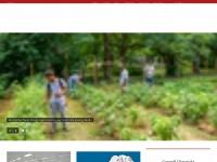 cornell.edu Thumbnail