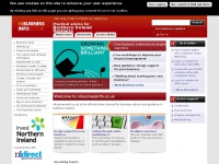 nibusinessinfo.co.uk Thumbnail