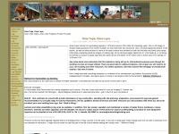 schooloflogbuilding.com