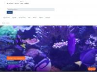 customaquariums.com