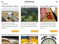 dopehome.com