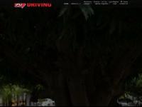 A-1driving.com