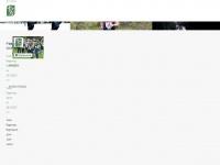 Turkurogaining.fi
