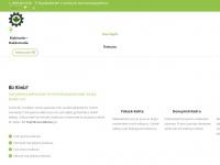 yesilbursamakina.com