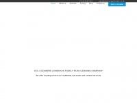 cleancompanylondon.co.uk