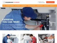 plumbers-pulborough.co.uk