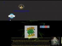 seedqueenseeds.com