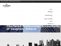cpaprofessionals.ca