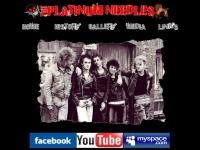platinum-needles.co.uk