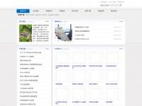 passengerengine.com