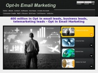 opt-in-email-marketing-lists.com