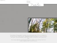 davidmoorephotography.ie Thumbnail