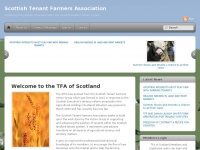 Tfascotland.org.uk