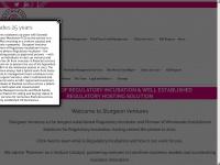 sturgeonventures.com