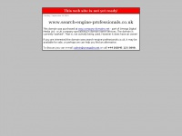 search-engine-professionals.co.uk