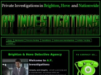 Ayinvestigations.co.uk
