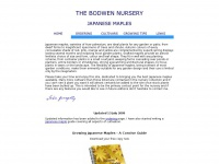 bodwen-nursery.co.uk