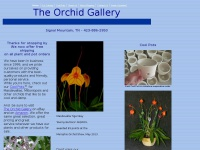 Theorchidgallery.net
