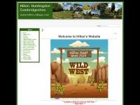 hilton-village.com