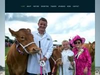 camelfordshow.co.uk Thumbnail