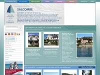 salcombeinformation.co.uk