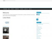 Chichestercameraclub.org.uk