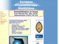 synapsephysiotherapy.com