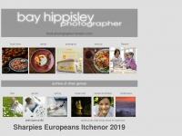 bayhippisley.com