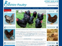 Cheshire Poultry Breeders Keeping Chickens Hatching Eggs Chickens For Sale