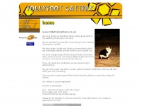 follyfootcattery.co.uk