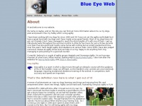 blueeyeweb.co.uk