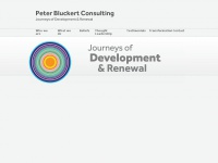 peterbluckertconsulting.com