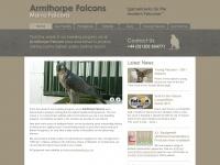 Armthorpe-falcons.co.uk