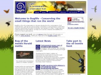 buglife.org.uk