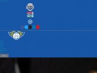 fifeflyers.co.uk Thumbnail