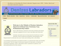 denizeslabradors.co.uk