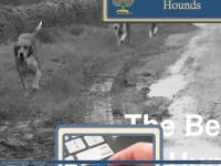 belvoir-hunt.co.uk