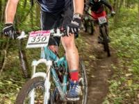 imba.org.uk