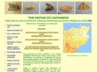 Caithnessmoths.org.uk
