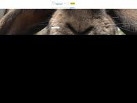 nawt.org.uk