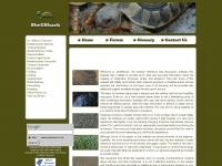 shellshack.co.uk