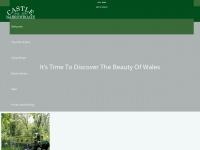castlenarrowboats.co.uk Thumbnail