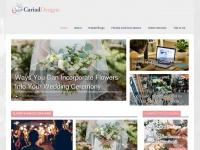 cariaddesigns.co.uk Thumbnail