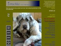 irishwolfhound.co.uk