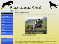 blaenllainstud.co.uk