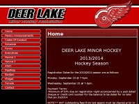 deerlakeminorhockey.com