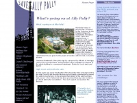 saveallypally.com