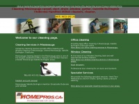 mississaugacleaning.ca Thumbnail