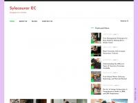 sylacaugarec.com