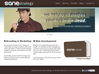sanestrategy.com